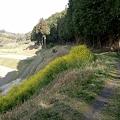 Photos: saigoku18-24