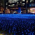 Photos: 東京ミッドタウン・スターライトガーデン-5