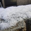 Photos: 初積雪