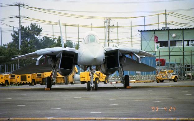 どら猫の休息(F-14A トムキャット)