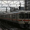 THE 313系
