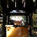 Photos: 世田谷線:宮の坂駅界隈_世田谷八幡宮-05手水舎