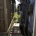 Photos: fukusima101128047