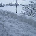 Photos: 2011/01/30 01 屋根雪