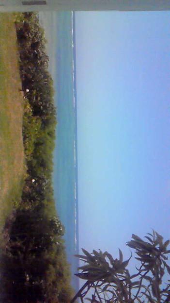 写真: 海がめっちゃ綺麗だぁ