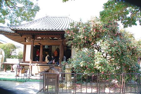 2010年04月04日伝香寺本堂