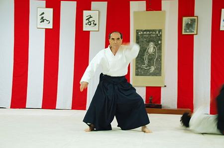 2010年05月05日武蔵野合気道連盟合同稽古
