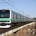 Photos: 成田線 普通列車 E231系