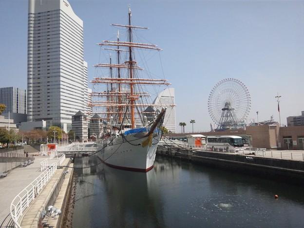 Photos: 20110417_103428