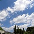 Photos: 今日の空♪