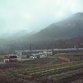 写真: おはようございます。雨があがって霧の朝になりました>223系 8連 快速 大阪行き>