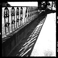 写真: Fence and the Shadows 5-6-12
