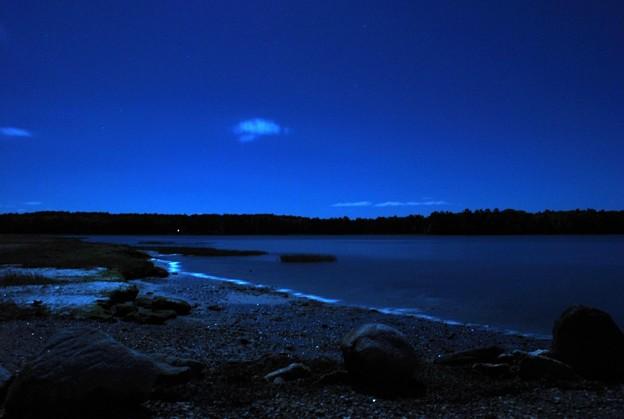 写真: Moonlight