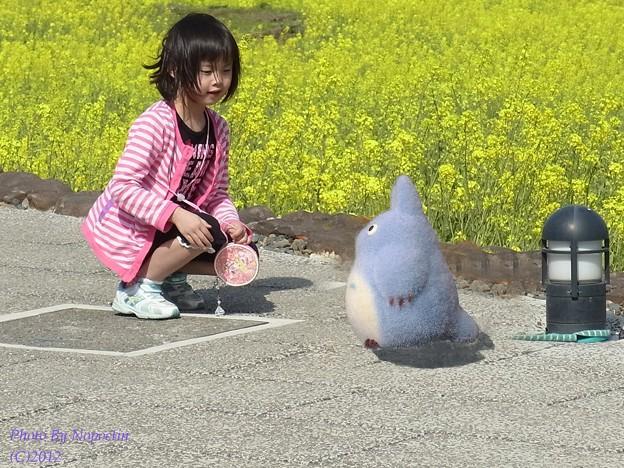写真: ねぇ,遊ぼうよ(^^)
