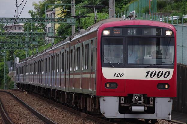 IMGP6414
