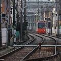 都電荒川線8800系(オレンジ)DSC_5364