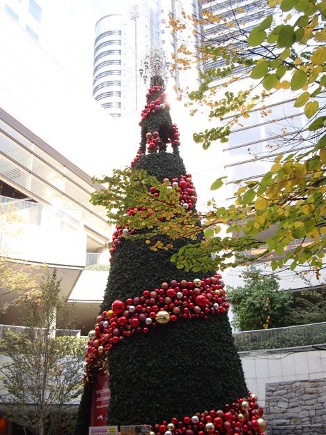 Christmastree001