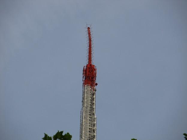 東京タワーの先端