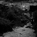 Photos: 尾道の坂3