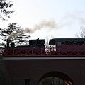 Photos: 蒸気機関車12号が行く