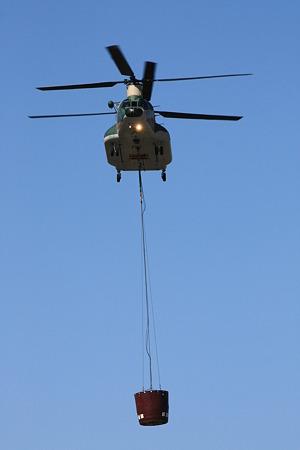 CH-47J #495 IMG_0644