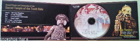 仏歯寺入場券代わりのミニCD-ROM