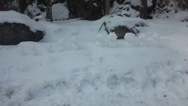 今日の雪は固まらない