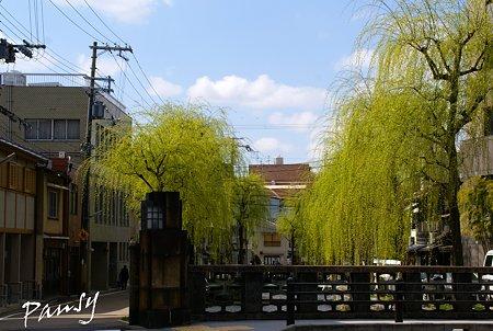 若緑・・京都街角sketch・・4