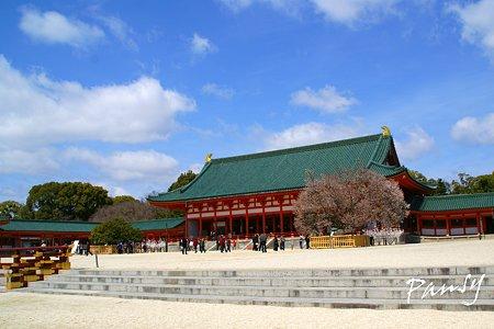 桜咲く・・平安神宮・・