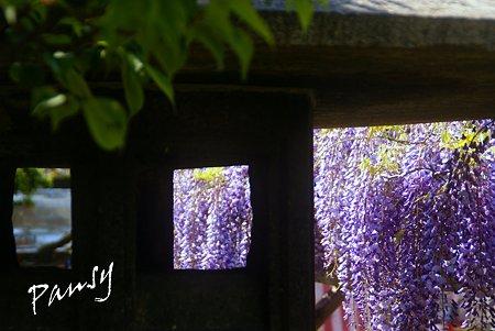 石灯篭の窓から・・