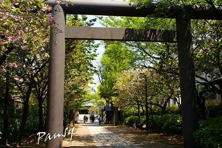 香取神宮にて・・
