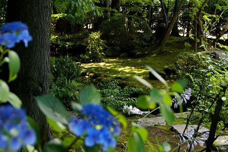 吉亭庭園にて・・3