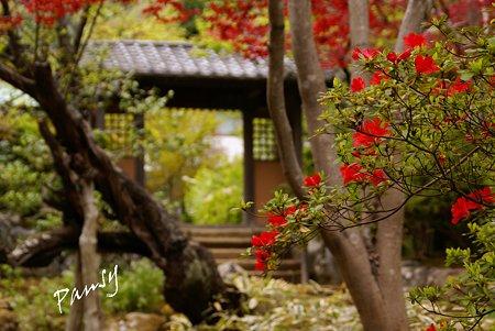 海蔵寺・・1