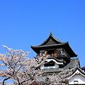 Photos: 国宝~犬山城~