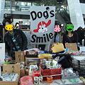 Photos: dog's smileフリマ