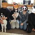 Photos: コマの家族