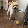 Photos: 動いたーーー!!!
