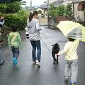 Photos: 雨の中の散歩