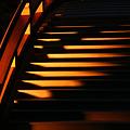 Photos: 反橋の光の階段!(100430)
