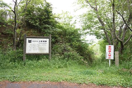 上桜城 - 1