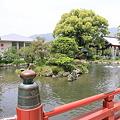 Photos: 100521-61太宰府天満宮 太鼓橋の池