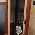 Photos: 猫侵入防止
