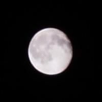月は撮れるのか