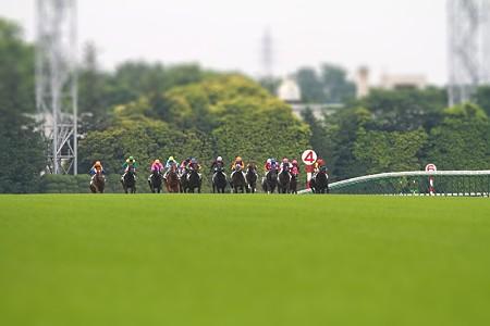 Derby2010_2