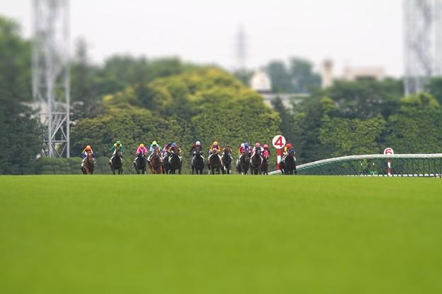 写真: Derby2010_2