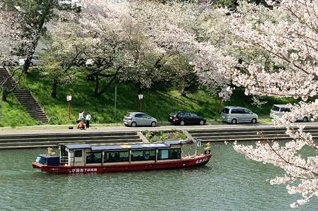 okazaki sakura matsuri-220407-6