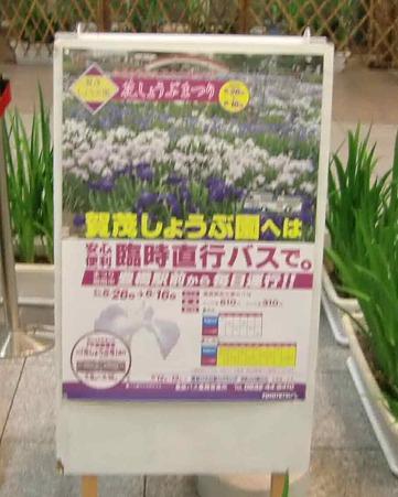 kamo-syoubu-220520-3