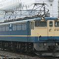 写真: pf1041-20090830