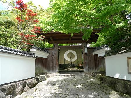 梅の花 太宰府別荘自然庵(1)
