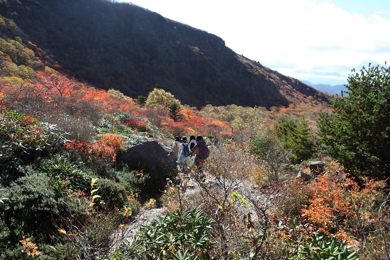IMG_8909那須 茶臼岳 姥ヶ平の紅葉